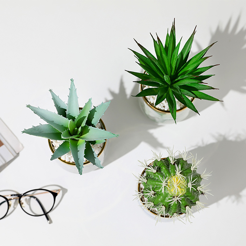 Erxiaobao Fake Cactus Artificial Plants with Pot Simulation Succulent Plants Fleshy Small Potted Living Room Table Decoration in Artificial Plants from Home Garden
