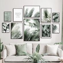 Planta Tropical Monstera verde, cuadro sobre lienzo para pared, carteles nórdicos e impresiones de imágenes de pared para decoración para sala de estar