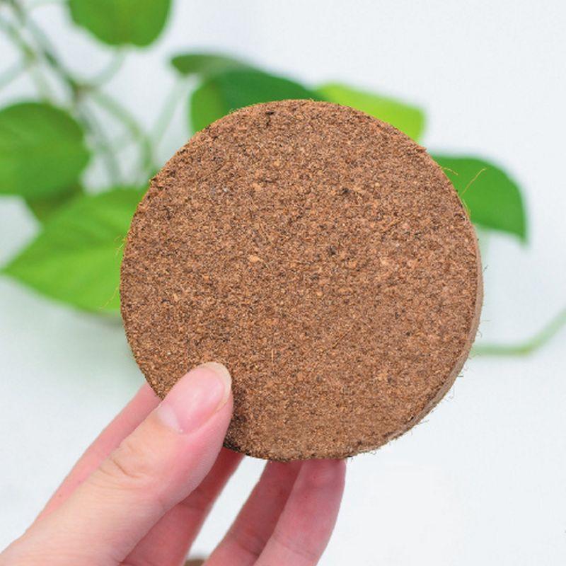 Natural Coconut Fiber Substrate Bricks Soil Essentials For Reptile Terrariums Y1AB