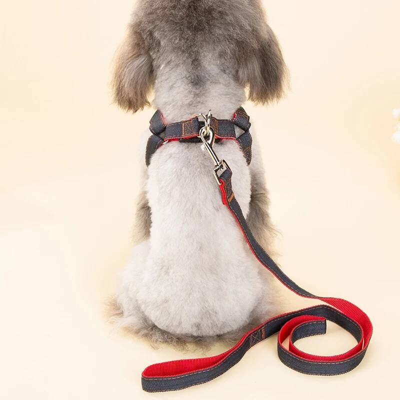 Medium Hand Holding Rope Teddy Golden Retriever Dog Rope Case Neck Dog Chain Small Cowboy Dog Pet Supplies Xiang Quan Lian