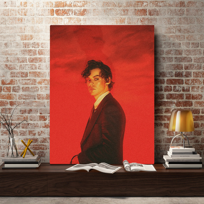 New Harry Styles Beauty Papers Cover Poster Print Art Canvas Music FREE SHIPPING
