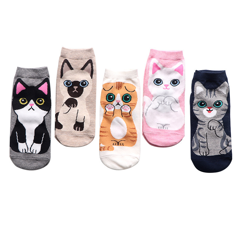 LIONZONE 5Pairs 2019 Newly Women Fashion Ankle Socks Kawaii Cartoon Cat Cotton Socks For Spring And Summer