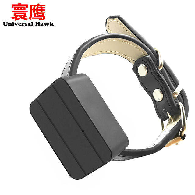Dogs Pet Mini GPS Tracker Kids Personal Locator Anti-Lost Tracking Device Voice Monitor GSM GPRS Online Free Website APP 1