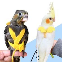 Bird-Harness Leash Training-Rope Pet-Parrot Flying Anti-Bite Outdoor Traction-Straps