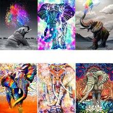 Amtmbs картина маслом по номерам Красочные Животные Слон рисование