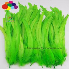 New 100 pcs Pretty Dyed fruit green Rooster Tail Feathers 8-18inches /20-45cm diy jewelry h