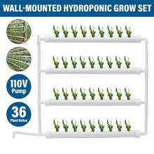 Hydroponic Site Grow Kit 36 Planting Sites Garden Plant System Vegetables Tool Box Soilless Cultivation Plant Planter Grow Kits