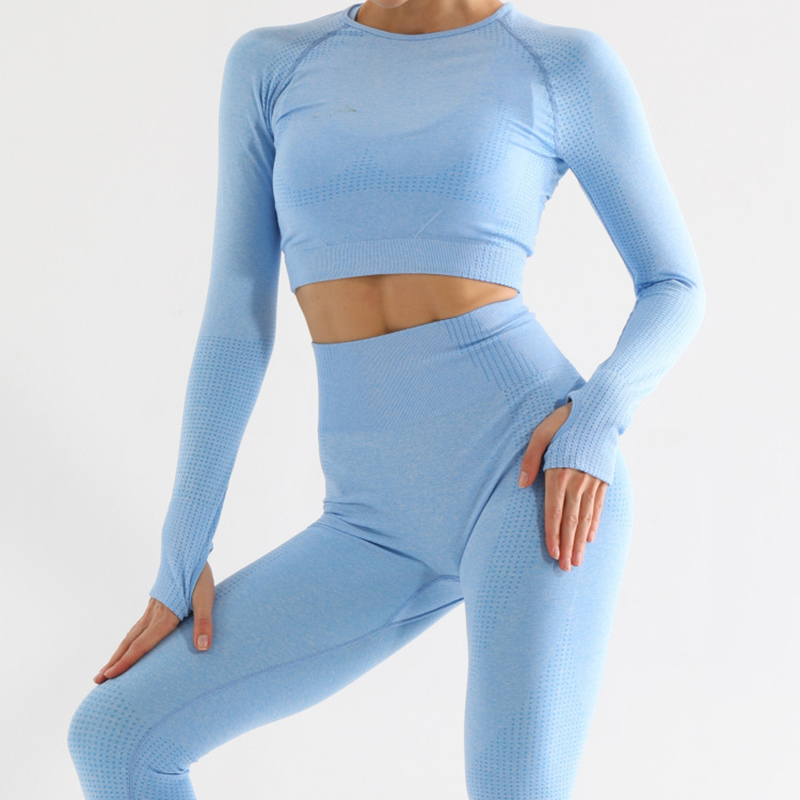 Seamless Sport Set Women 2 Piece Yoga Set Fitness Shirts Crop Top High Waist Leggings Gym Clothing Tracksuit Workout Clothes Set