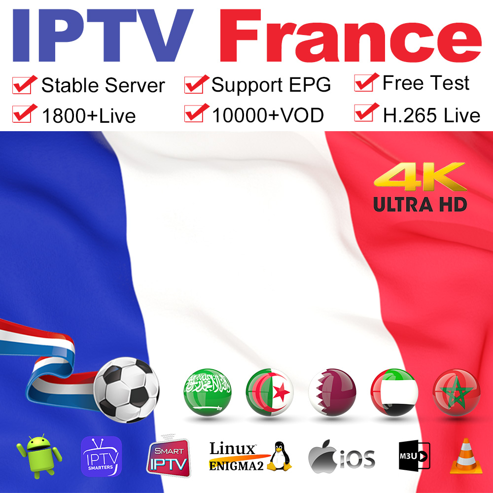 IPTV France Arabic Germany IPTV Subscription Belgium Netherlands Code For M3u Android Smart Tv MAG Morocco Algeria IP TV French