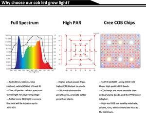 Image 3 - Lámpara de crecimiento Phlizon cob led Luz de crecimiento 3000W espectro completo led kweeklampen Luz de crecimiento para plantas floración dropshipping