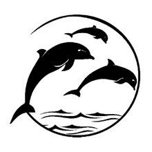 16*15 см Дельфин океан Спасательная шлюпка соленой воды автомобиля Стикеры s веселый автомобиль окно бампер Новинка дрейф JDM виниловые наклей...