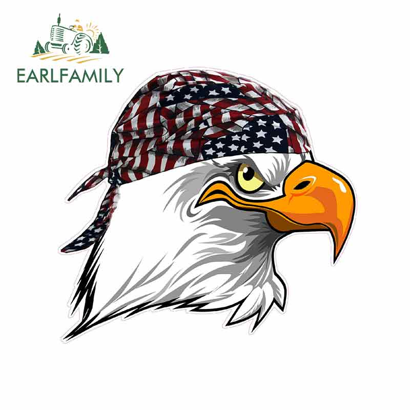AMERICAN BALD HEADED EAGLE  AUTO BOAT HIGH QUALITY VINYL DECAL STICKER