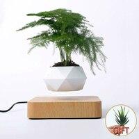 Lewitująca doniczka na drzewka bonsai, dekoracja biurka, lewitacja na poduszczę magnetycznej, zawieszenie w powietrzu, latająca donica, kwiaty, rośliny w donicy
