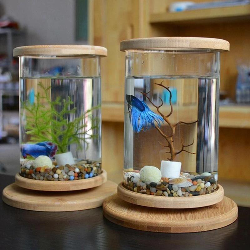betta fish tank Decoration