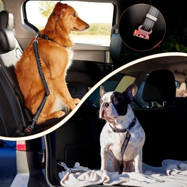 PawGuard™ Dog Seat Belt