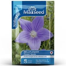 American Heirloom MARSEED Bellflower Flower  Seedsplants Seedling Garden Outdoor
