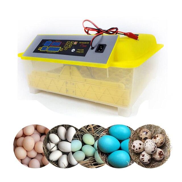 48 Egg Incubator Fully Automatic 12V - 220V Large Capacity  6