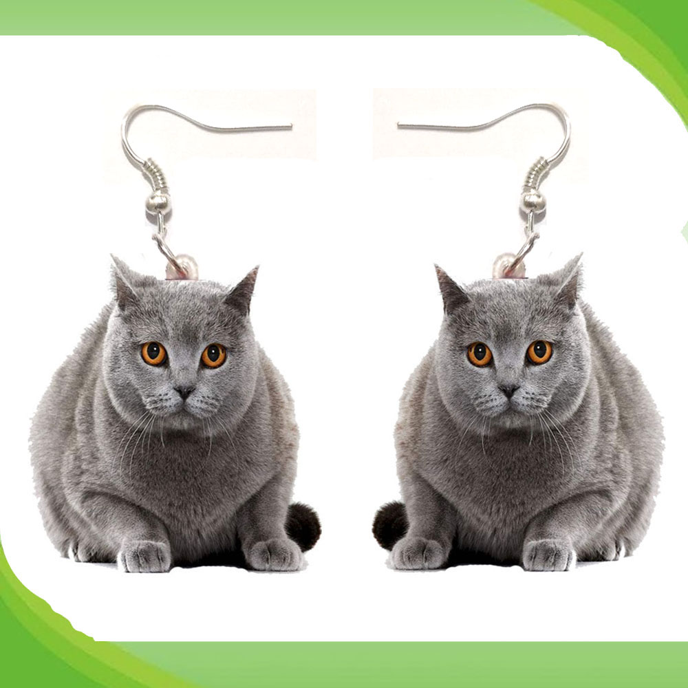 1 Pair British Shorthair Acrylic Earrings Stainless Steel Earring Jewelry Women Love Cat Pet Gift Fashion Antique Vintage Toy