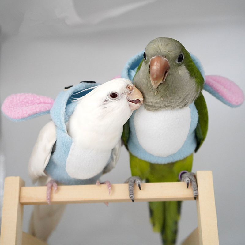 Bird Warm Clothes Hand-made Parrot Clothes Soft Fabric Parrot Costume Bird Cute Flying Suit M6169