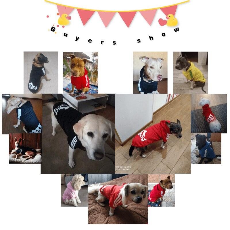 Товары для домашних животных, одежда для собак, пальто, куртка, толстовка, свитер, одежда для собак, хлопковая одежда для собак, спортивный стиль, одежда для собак-5