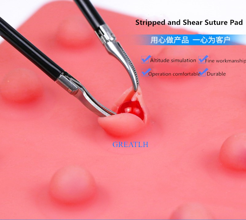 Stripping Modle Laparoscopic Simulator Suture Pad Instruments Traumatic Skeleton Anatomy Training