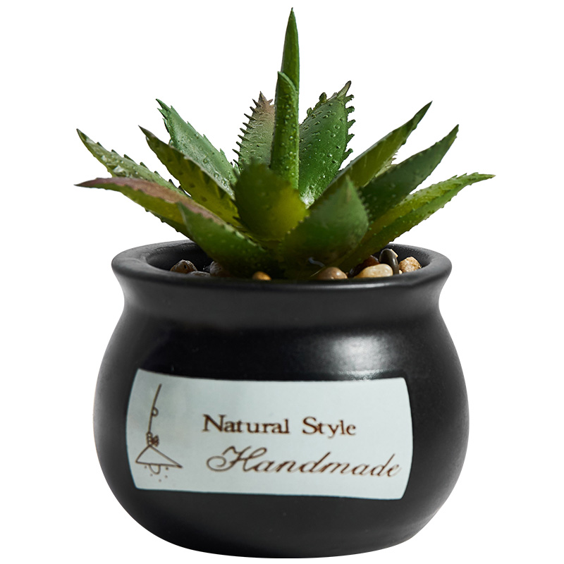 Nordic ins wind simulation succulent plant potted cute mini creative desktop green plant fake flower decoration small ornaments  - buy with discount