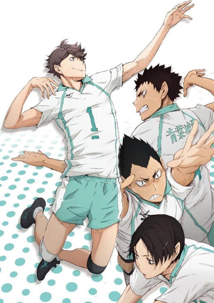 Haikyuu Aobajohsai High Cosplay Uniform Oikawa Tooru Yocchin Volleyball Team Jersey Sportswear Seijoh Costume T Shirt Shorts Set Aliexpress