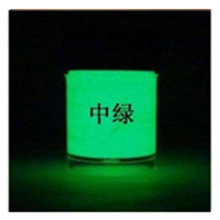 Luminous Acrylic body paint with brushes Pigment Phosphor paint Powder Luminescent paint Glow at Night Coating 10g(China)