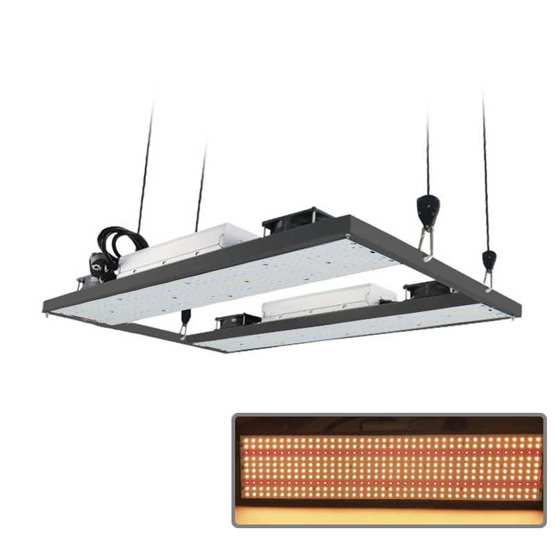 Super Bright 240W 480W 720W Samsung LM301B LM301H Dimmable LED Papan UV IR LED Grow Light Meanwell driver 7 Tahun Garansi
