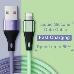 2PCS USB Cable For iPhone Cable 11 Pro Max Xs Xr X 8 7 6 6s 5s Plus iPad Fast Charging Cables Cord Data Cable For iPhone Charger