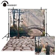 Fondo de Allenjoy photophone para estudio fotográfico arco europeo puente calle lago boda Fondo fotografía sesión fotográfica