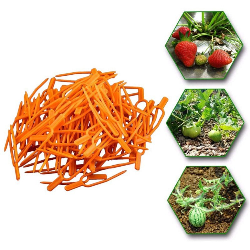 50PCS Plastic Plant Climbing Support Clips Plant Vine Fixer For Strawberry Seedling Tomato Garden Supplies