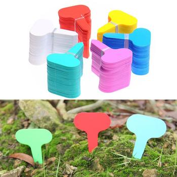 100Pcs Plastic Colorful T-type Garden Tags Ornaments Plant Flower Label Nursery Thick Tag Markers for Plants Garden Decoration 50pcs plastic plants tags nursery garden ring label pot marker stake hanging tags greenhouse bonsai collar tags
