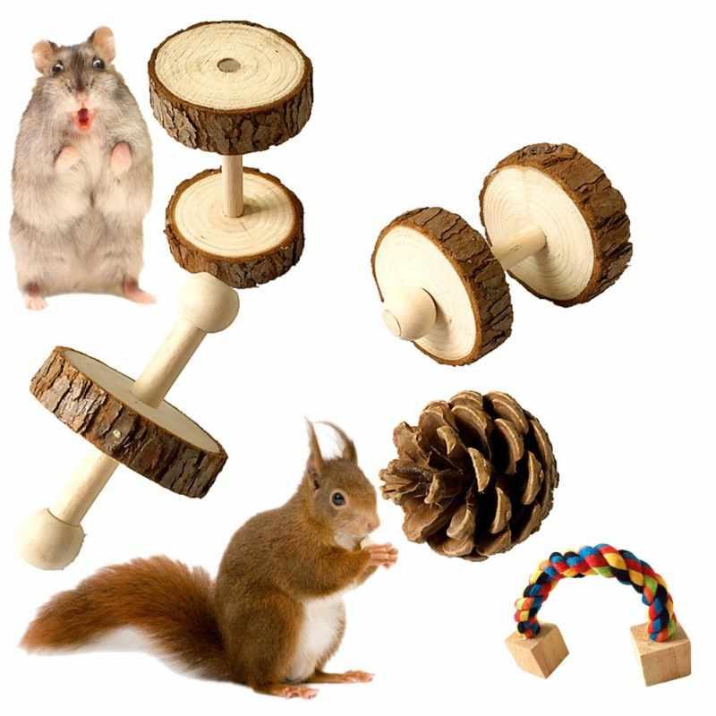5 unids/set hámster de masticar juguetes loro cuidado de los dientes mordiendo Molar surtidos juguetes mascota hámster jaula accesorios de juguete