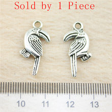 Sales Retail 1 Piece 24x13mm Toucan Bird Charms Pendants For Friends Fashion Jewelry Womens Accessories(China)