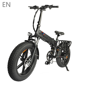 Electric bike 48V12.8A LG 20*4.0 Fat Tire electric Bicycle 750W Powerful Mountain ebike Snow/8Speeds Full throttle