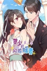 贺少的闪婚暖妻第3季[更新到13集]