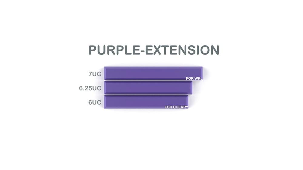 011-CYBERPUNK PUMPER Spacebar Purple Extension