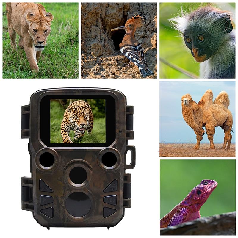 Mini câmera de trilha para caça, câmera de visão noturna com 12mp 300 p para animais selvagens, caça, área infravermelha, alcance ir de até 65 ft foto armadilhas|Câmeras de caça|   - AliExpress