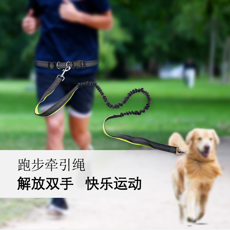 Hot Selling Belt For Walking Dogs Deconstructable A Extendable Shock-resistant Basic Dual Purpose Running Hand Holding Rope