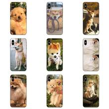 Shibainu Dog For Xiaomi Redmi Note 3 3S 4 4A 4X 5 5A 6 6A 7 7A K20 Plus Pro S2 Y2 Y3 TPU Phone Coque(China)