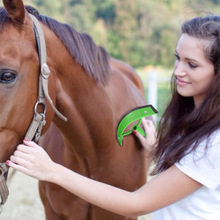 Accessories Grooming-Tool Horse-Sweat Equestrian Cleaning Riding Portable Non-Slip Scraper