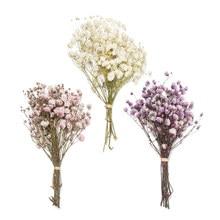 Mini decorativo flores secas babysbreath flores bouquet natural plantas preservar floral para o casamento decoração de casa