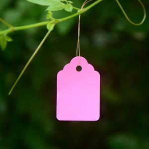 Image 5 - 100 pcs Plant Hanging PVC Tags Tree Labels Waterproof Strip Line Gardening Labels Multi Colored For garden potted plants