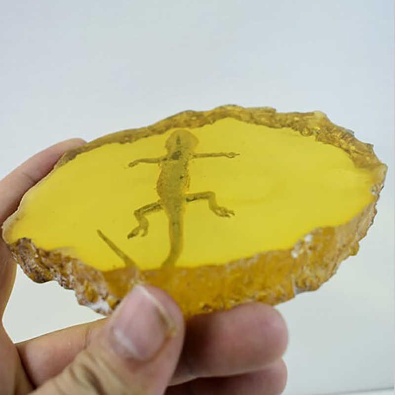 Hot XD-Kuning Amber Gecko Amber Ornamen untuk Real Serangga Spesimen