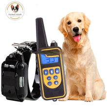 Collier électrique d'entraînement pour chien, 800m, étanche, Rechargeable, télécommande pour animal domestique, avec écran LCD, pour toutes les tailles