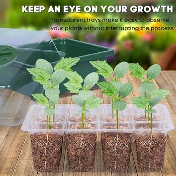 6/12 Holes Nursery Pot Plastic Plant Seeds Grow Plant Seeds Grow Box Tray Insert Propagation Seeding gardening hydroponic system