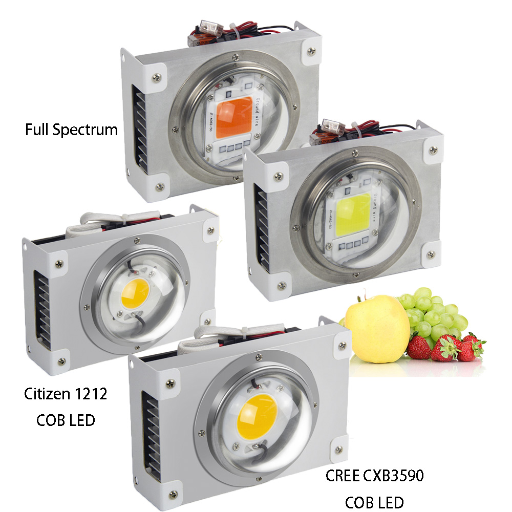 CREE CXB3590 COB LED Grow Light CXB3070 Full Spectrum 100W Citizen 1212 LED Grow Lamp Indoor Tent Greenhouse Hydroponic Plant