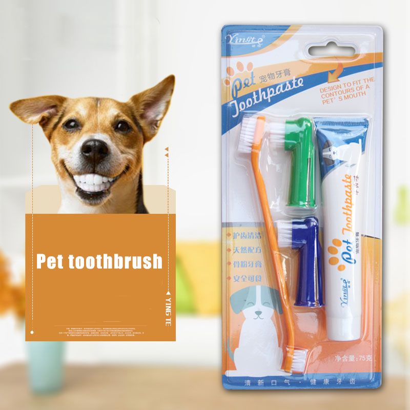 4 piece set Pet toothbrush set Cat and dog toothbrush toothpaste set Dog supplies Oral cleaning care Dog toothbrush VanillaBS002 image