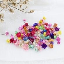 100/200 pçs flores secas cabeça de plantas de margarida seca para resina epóxi pingente colar jóias fazendo artesanato diy acessórios da arte do prego